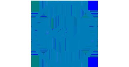 Dell Service